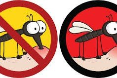 关于防蚊的种种谣言