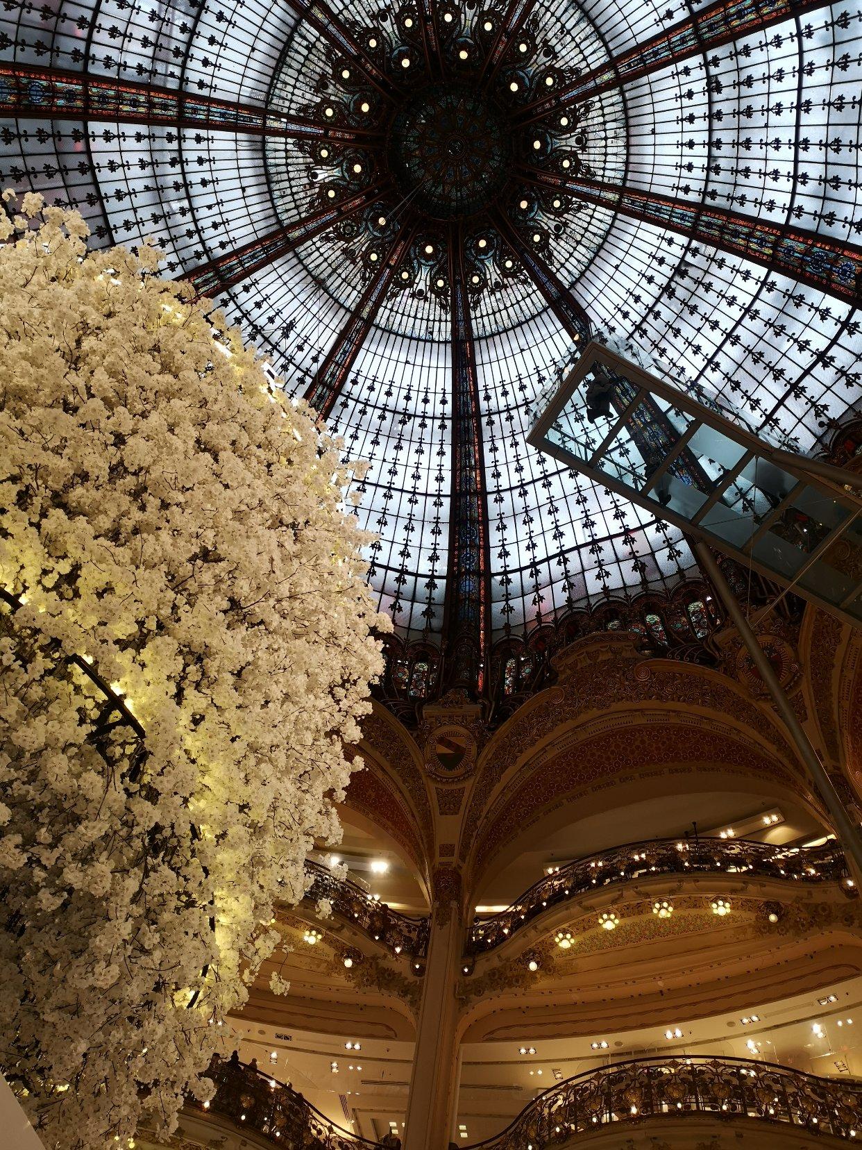 想带妈妈来巴黎看看