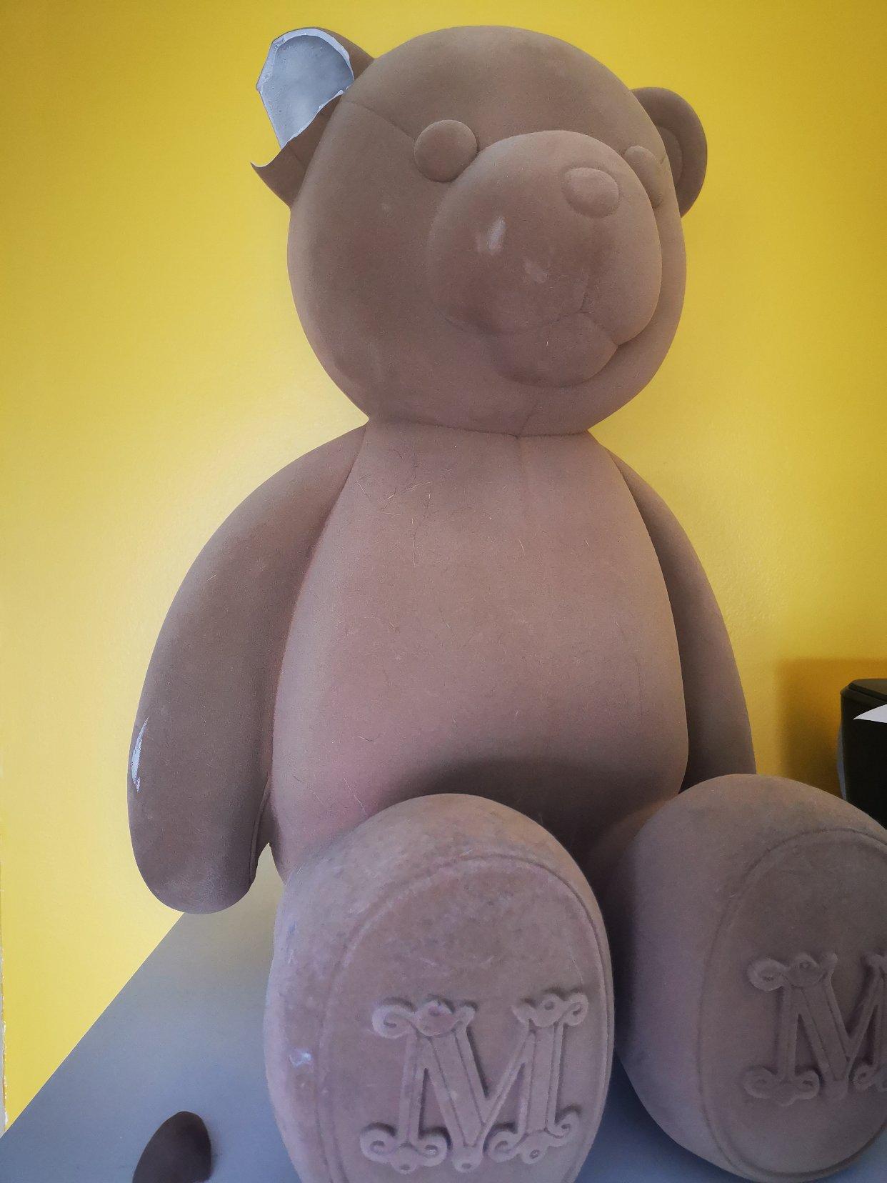 拆家现场,熊熊挂了