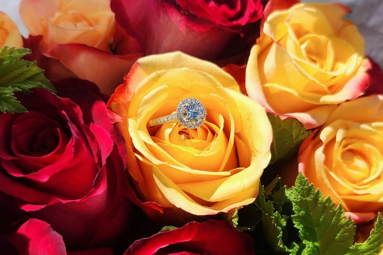 官宣 : 我被求婚了