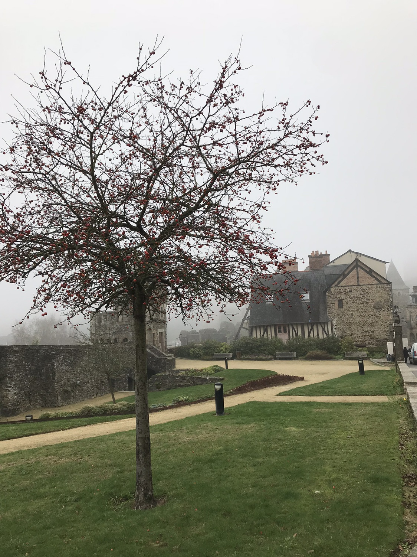 Fougères 城堡