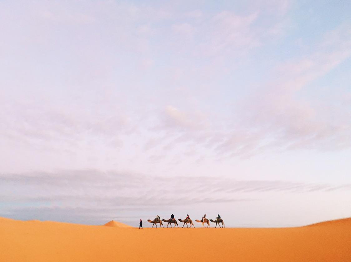 看沙漠下大雪,看过黄昏追逐黎明...