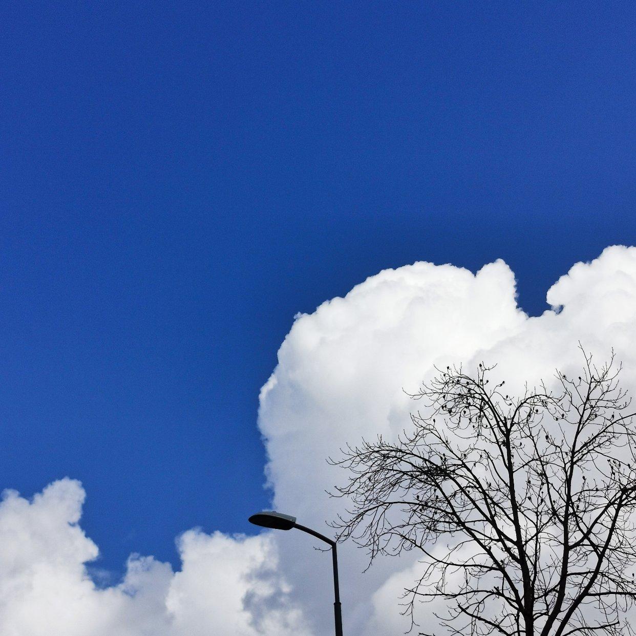 分享今日好天气和好心情~