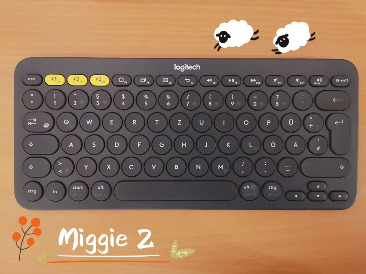 码字党的爱用好物🐸Logitech蓝牙键盘使用体验🐳