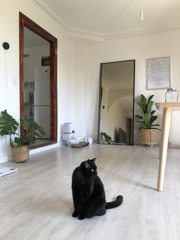 极简主义风格的家