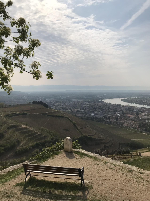Lyon南边罗纳河谷隐士山
