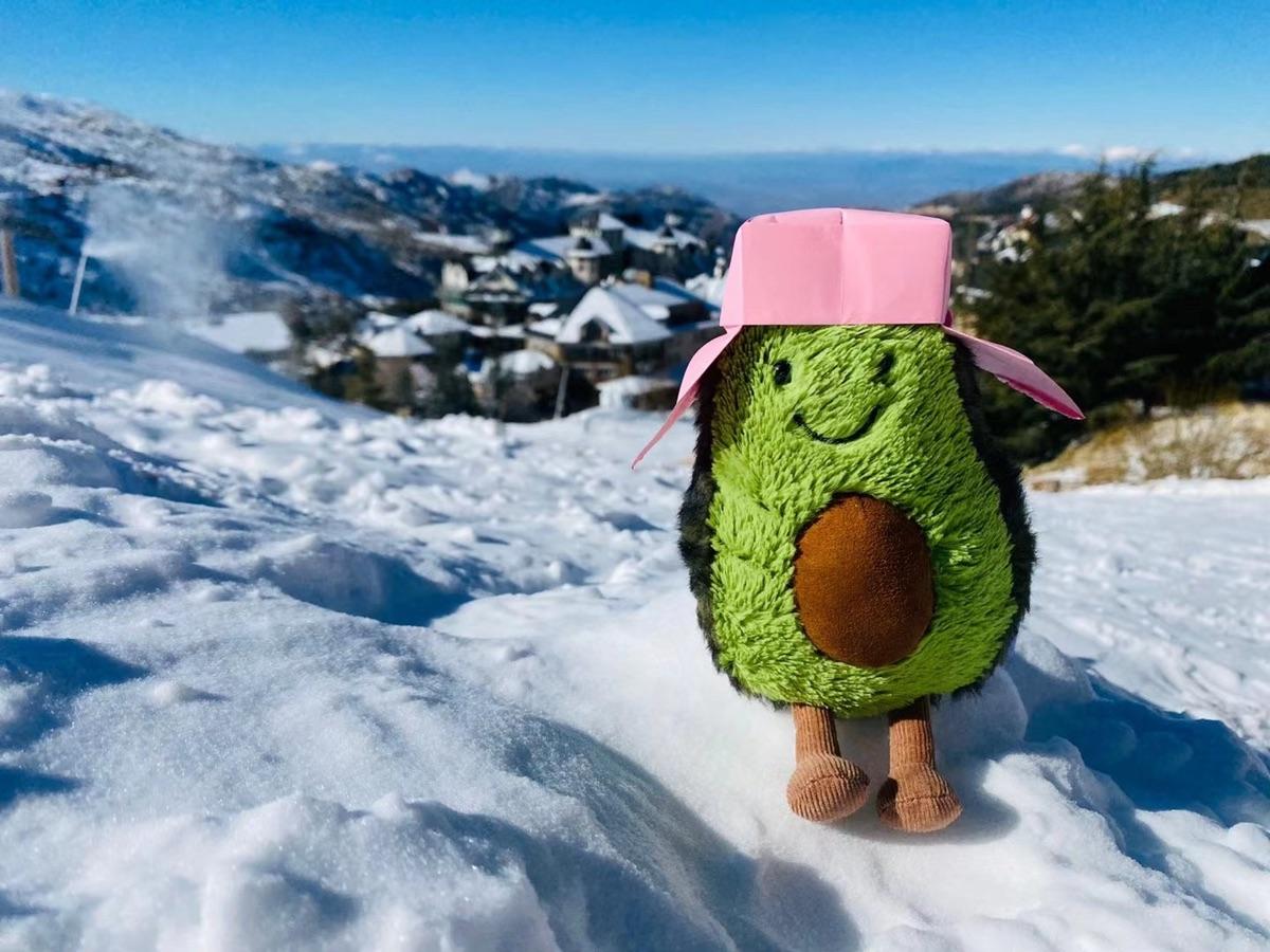 那些年给kiwi做过的帽子第一弹