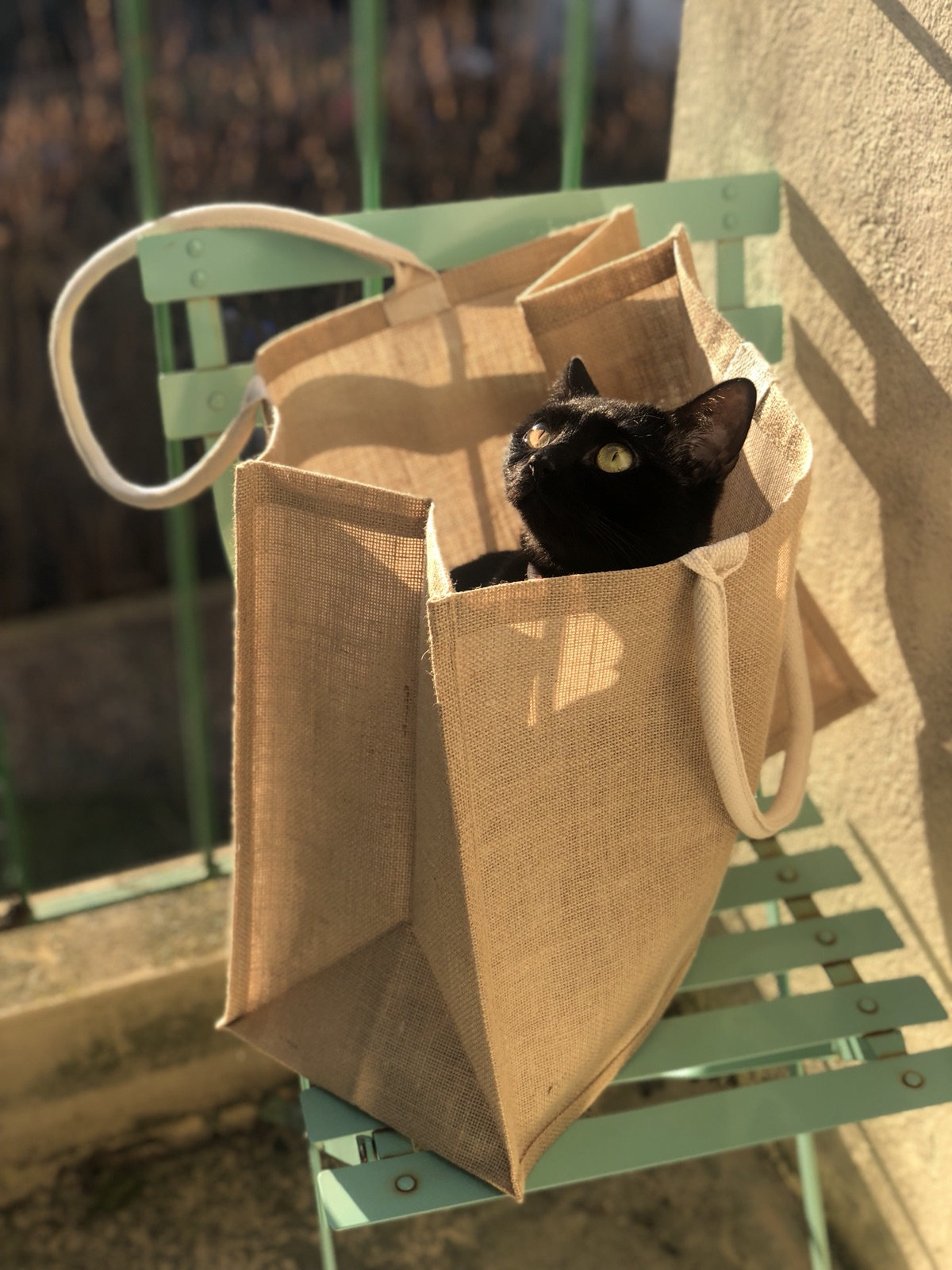 给大家推荐一款Muji环保袋 超大