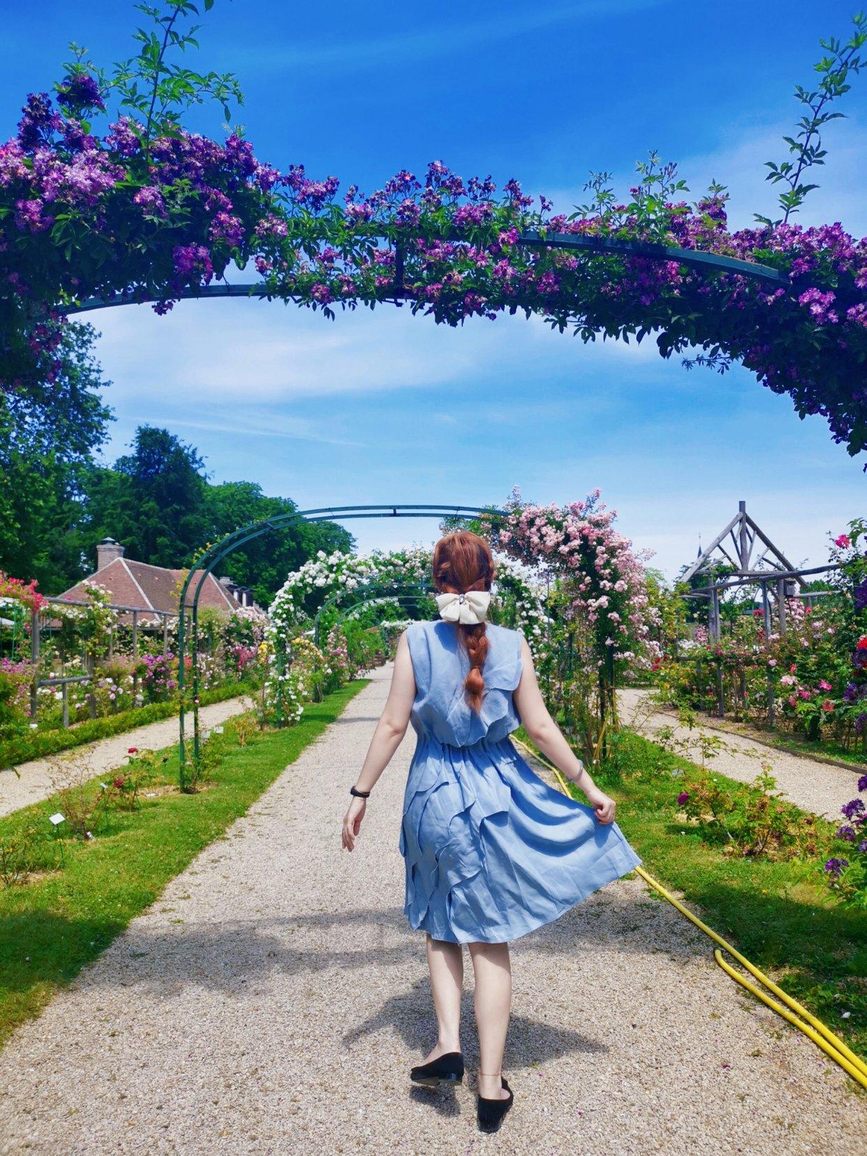 【游玩好去处】来看六月的玫瑰吧!