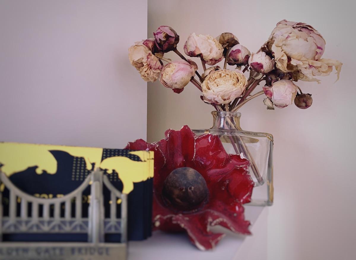 凡爾賽一下我的乾花們