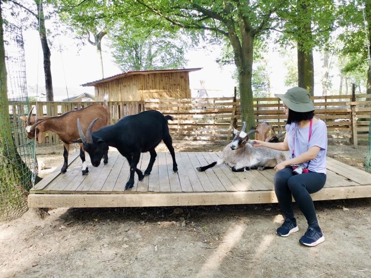 可以接触小动物的农场