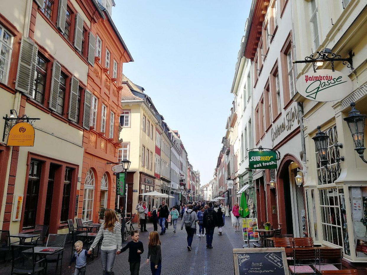 海德堡漫游