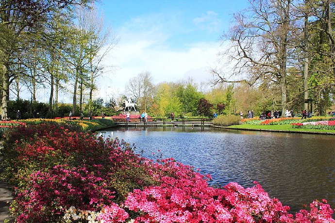 I amsterdam 自由无拘的阿姆斯特丹🌷
